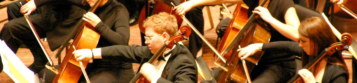 Cellists in concert