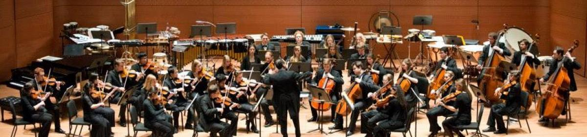 chamber orchestra at alice tully hall