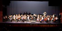Partners in Music orchestra in concert