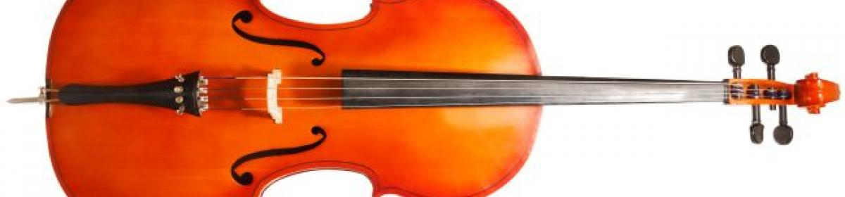 picture of a cello on its side