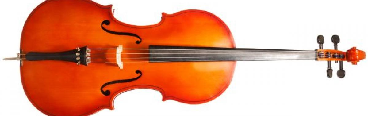 photo of cello on its side